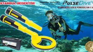 Pulse Dive Dedektör Video